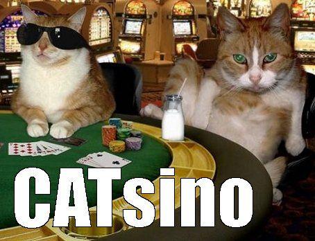 Best poker staking sites