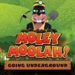 Moley Moolah Slot Review And RTP