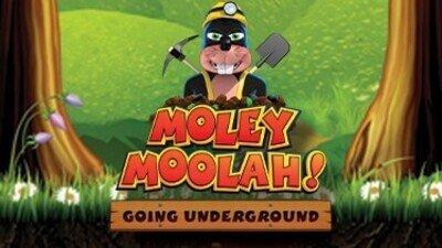 Reflex Gaming: Moley Moolah slot