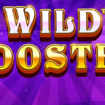 Wild Booster From Pragmatic Play