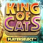 King Of Cats Megways Player Select And RTP